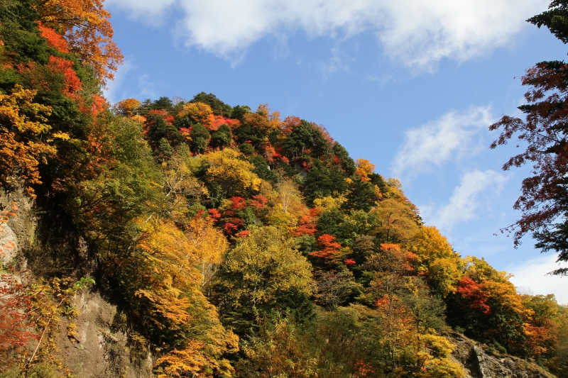 日光澤周辺の紅葉