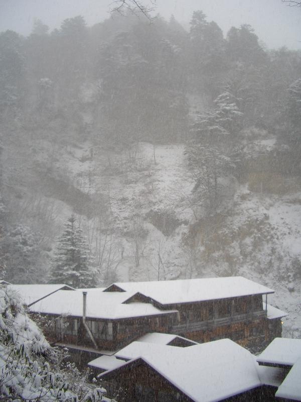 雪景色全体