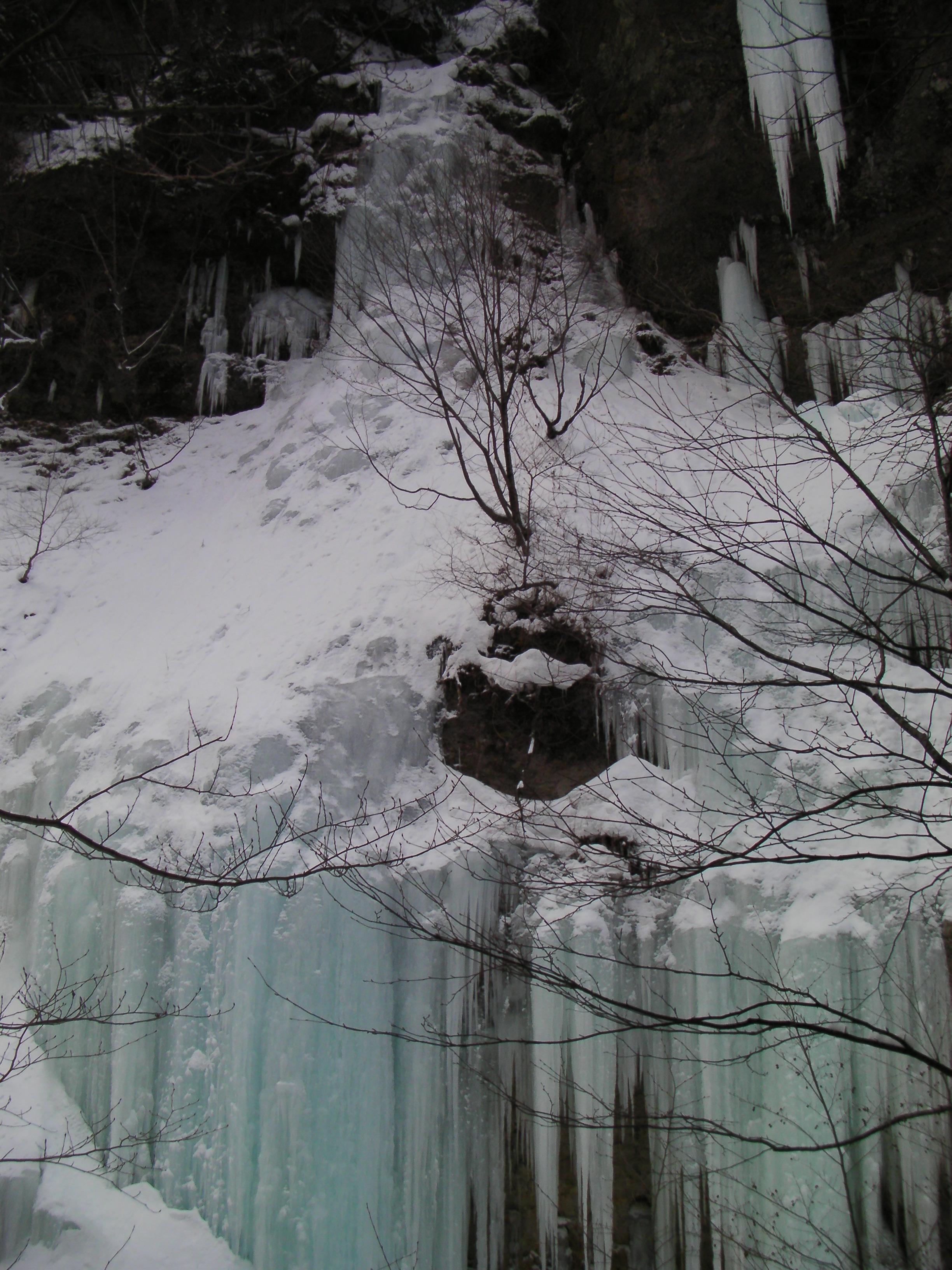 2013年1月26日鬼怒川上流