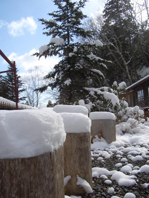 ベンチの雪