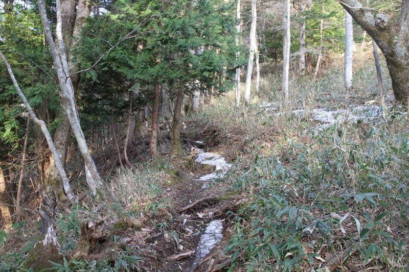 オロオソロシの滝展望台までの登山道